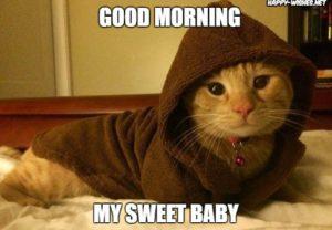 Latest 40 Creative Funny Good Morning Meme 2018