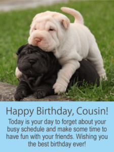 Latest 90 Happy Birthday Cousin Wishes Messages&Images And Meme