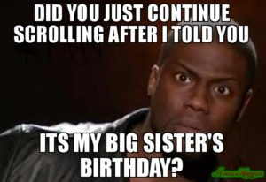 Birthday Meme  C2 B7 Did You Just Continue Scrolling After I Told You Its My Big Sister S Birthday  C2 B7 Funniest Happy Birthday