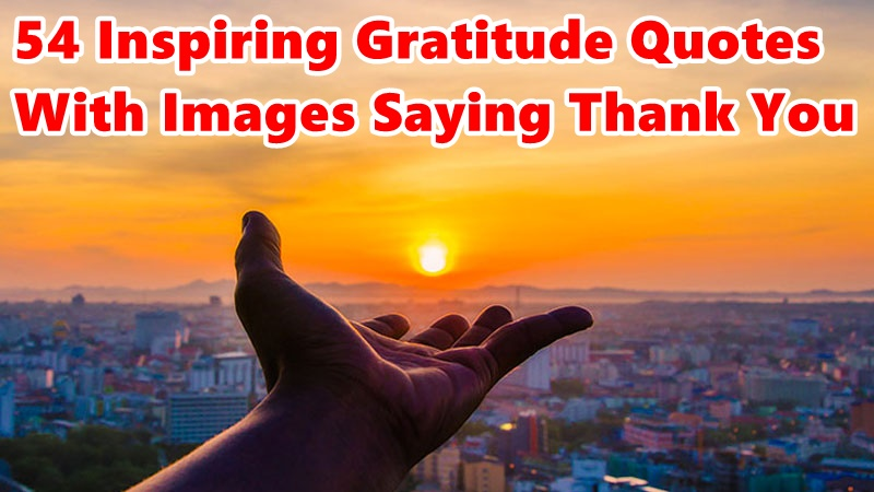 Top 54 Inspiring Gratitude Quotes With Images Saying Thank You